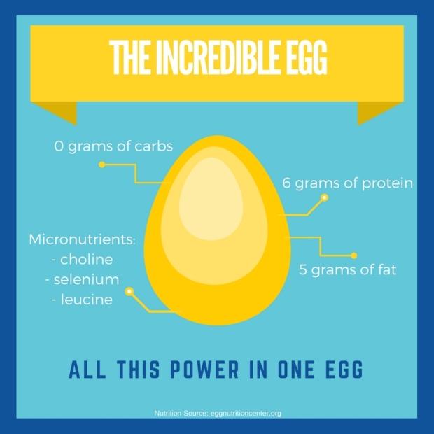 egg-nutrition1