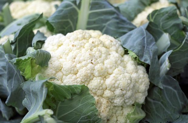 cauliflower-1465732_1920